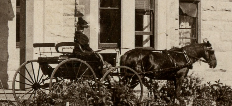 Historic photo of a lady of the Bennett family driving a 4 wheeled buggy, at Ashby